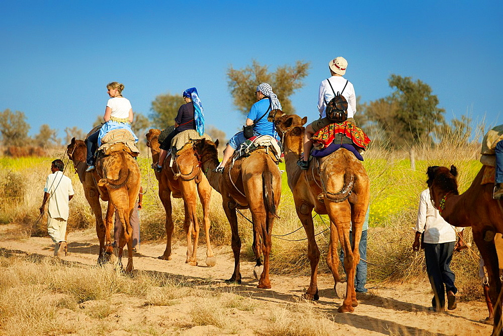 Camel caravan safari ride with tourists in Thar Desert near Jaisalmer, India.