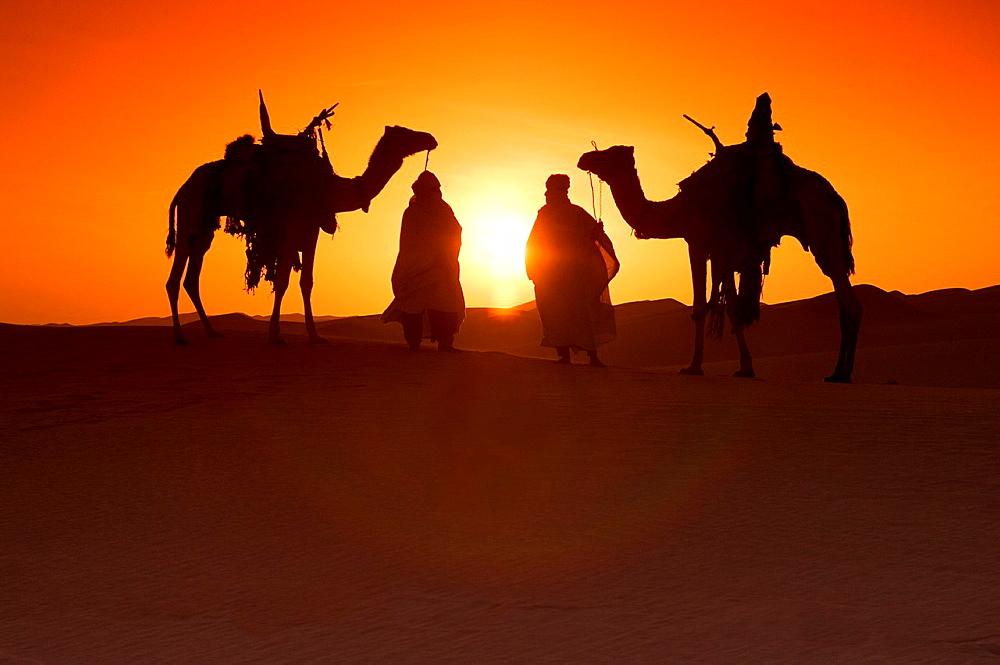 Tuaregs with her Camels, Libyan Arab Jamahiriya, Libyan Desert.