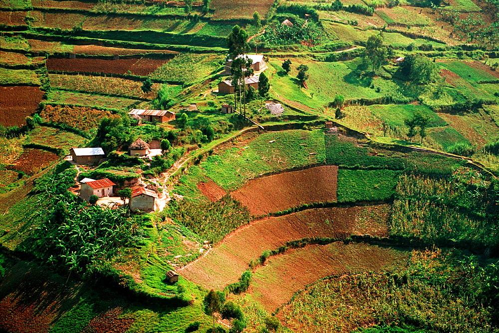 Landscape, Kigezi District, Uganda.