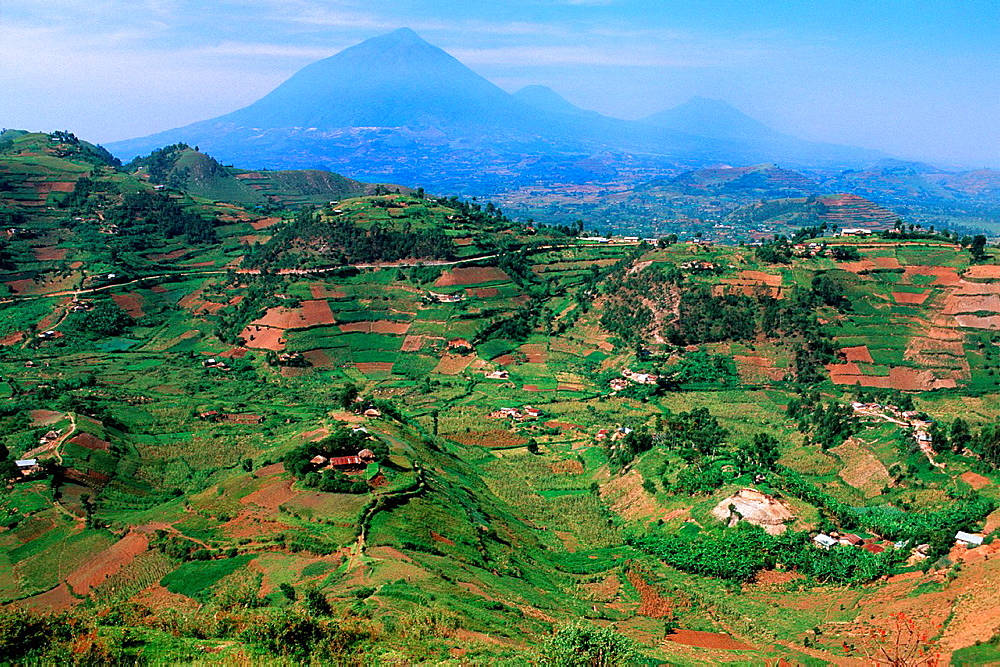 Landscape, Kigezi District, Uganda, in Background the Virunga Volcanoes.