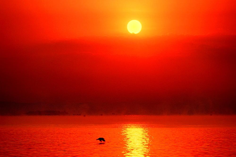 Lake Victoria, Sunrise, Fisher Boats in the morning Haze, Uganda.