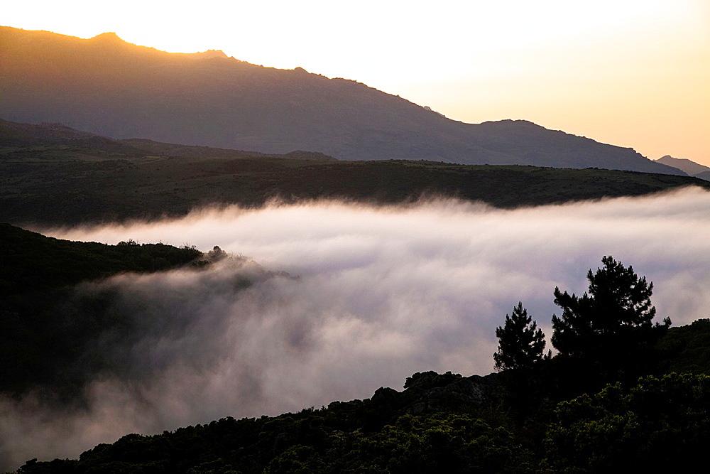 Landscape in Muratto, Corsica.