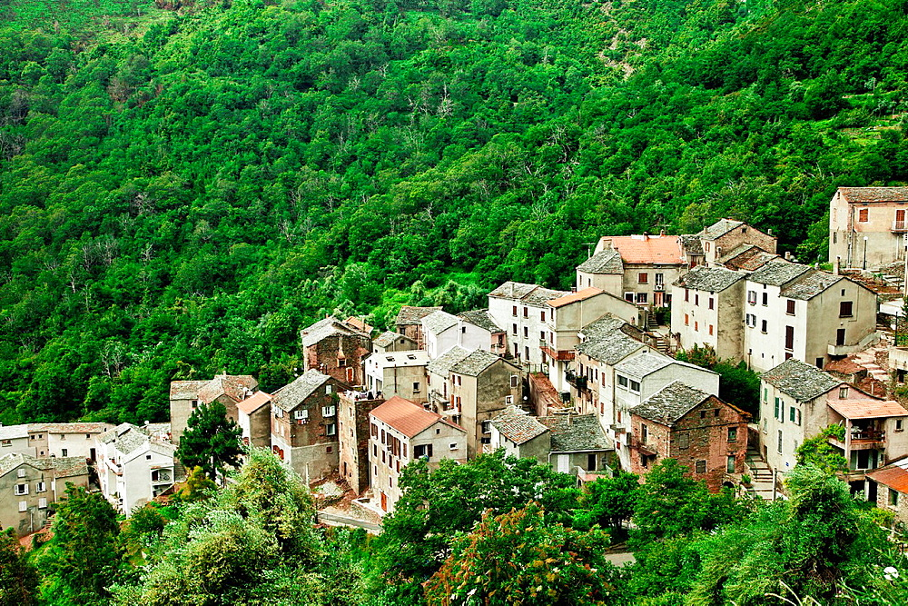 Village in the zone of Le Nebbio, Corsica.