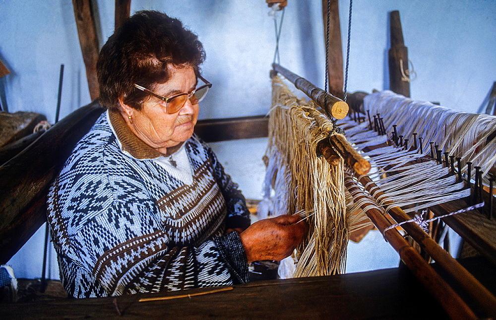 weaver, Isora, El Hierro, Canary Island, Spain, Europe.