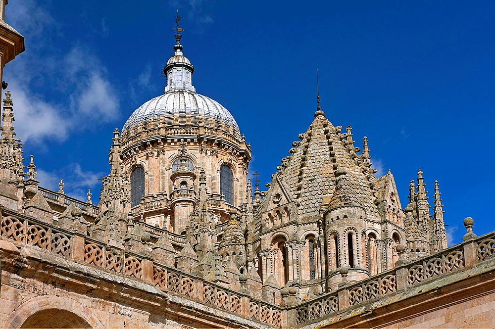 Domes of the Cathedral, Salamanca, Region of Castilla y Leon, Spain, Europe.