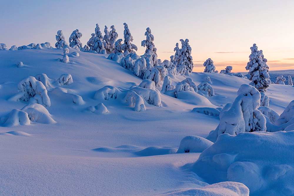 Winterlandscape in sunset on mount Hirvas in Gallivare in swedish lapland.