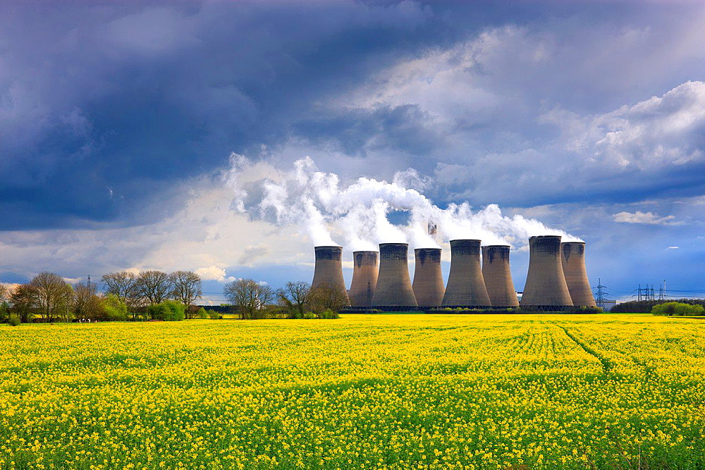 Cooling Towers at Eggborough Power Station Knottingley North Yorkshire England with oil seed rape field.