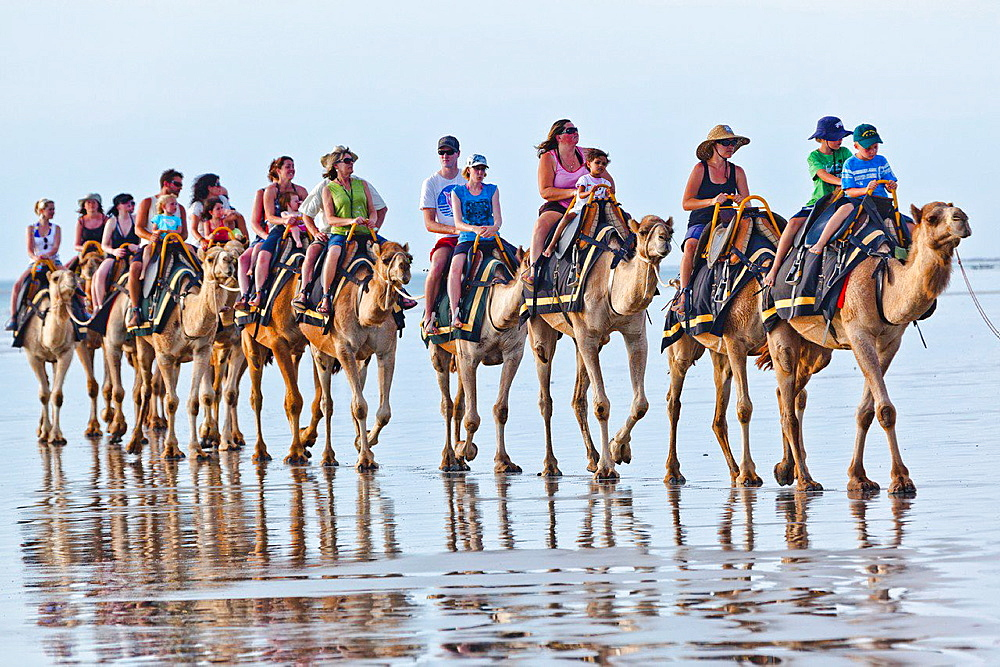 Australia, Western Australia, Broome, camel ride at Cable Beach