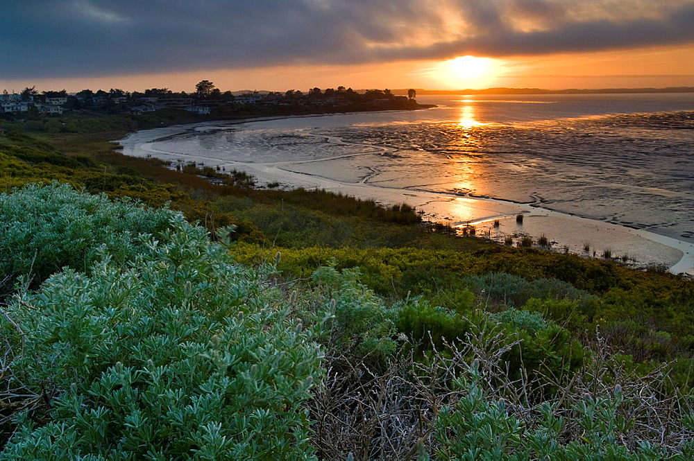Fog at sunset over the Elfin Forest and tidal mud flats of Morro Bay, California.