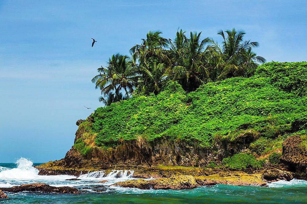 Birds Island, Bocas del Toro Archipelago, Bocas del Toro Province, Panama, Central America, America