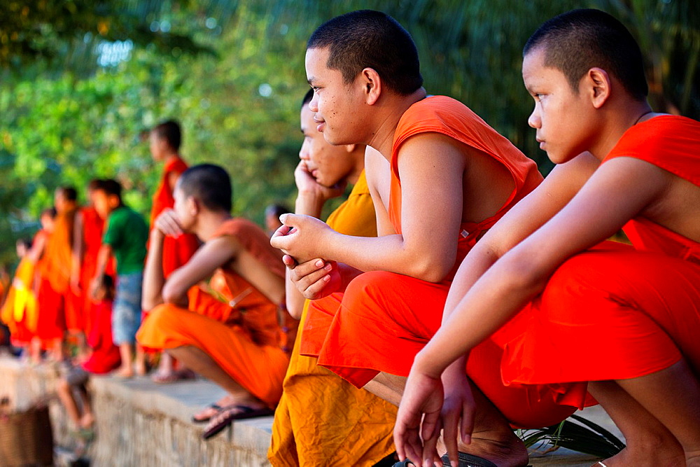 Buddhist monks watching the boat race in Paske, Laos.