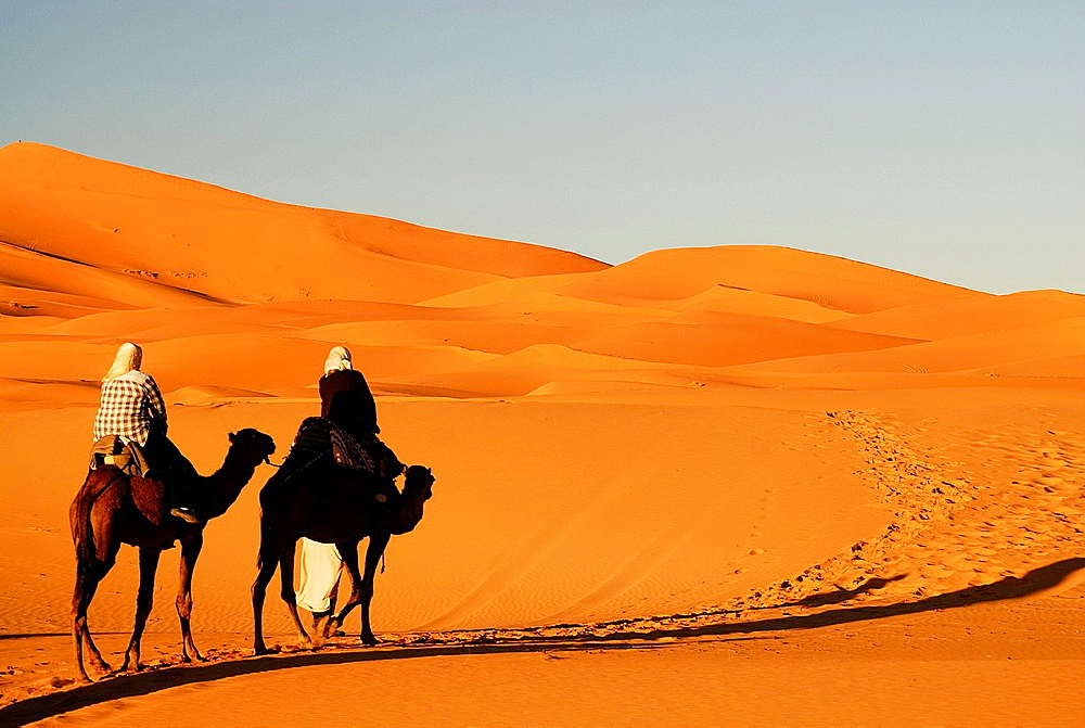 People and dromedaries in Erg Chebbi desert near Merzouga, southeast Morocco.