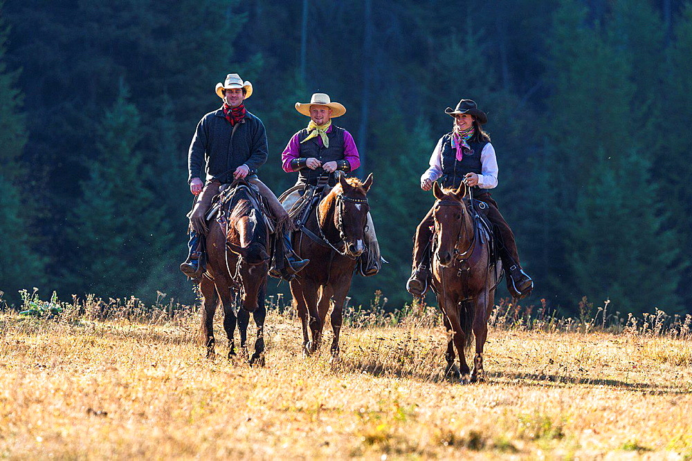 Three wranglers cowboys on horse, Montana, USA
