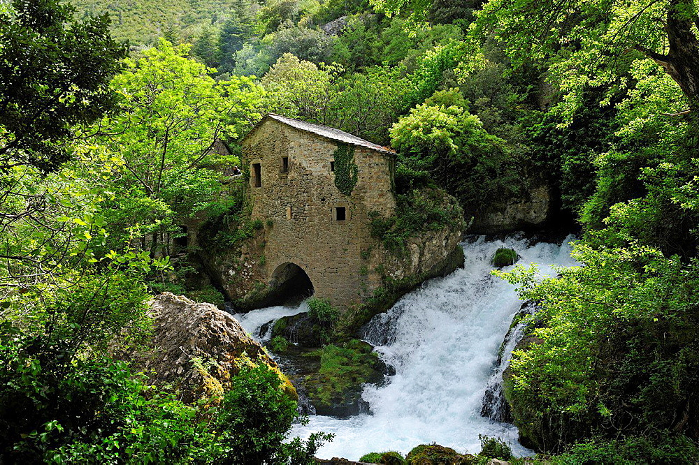 ancient Water Mill of La Foux, Gorges of the Vis River, located towards the southern edge of the Massif Central mountain range, Gard and Herault departments, Languedoc-Roussillon region, France, Europe.