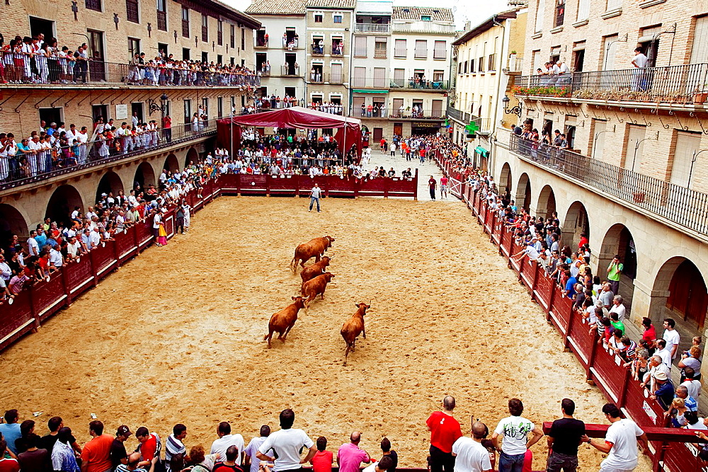 Plaza de Mena, Puente la Reina, Gares celebration. Navarre. Spain.