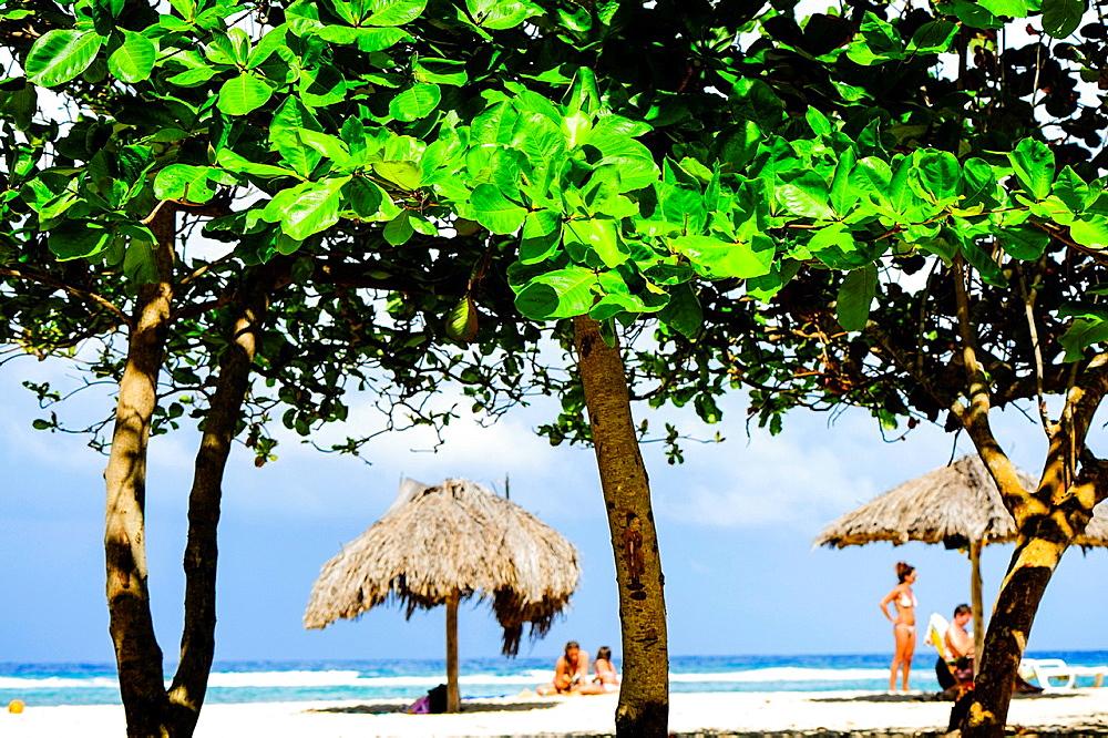 Cuba, Guantanamo, Baracoa, Playa Maguana.