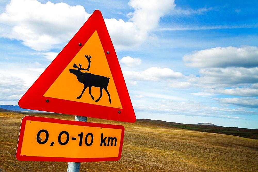 Reindeer sign. Iceland, Europe.