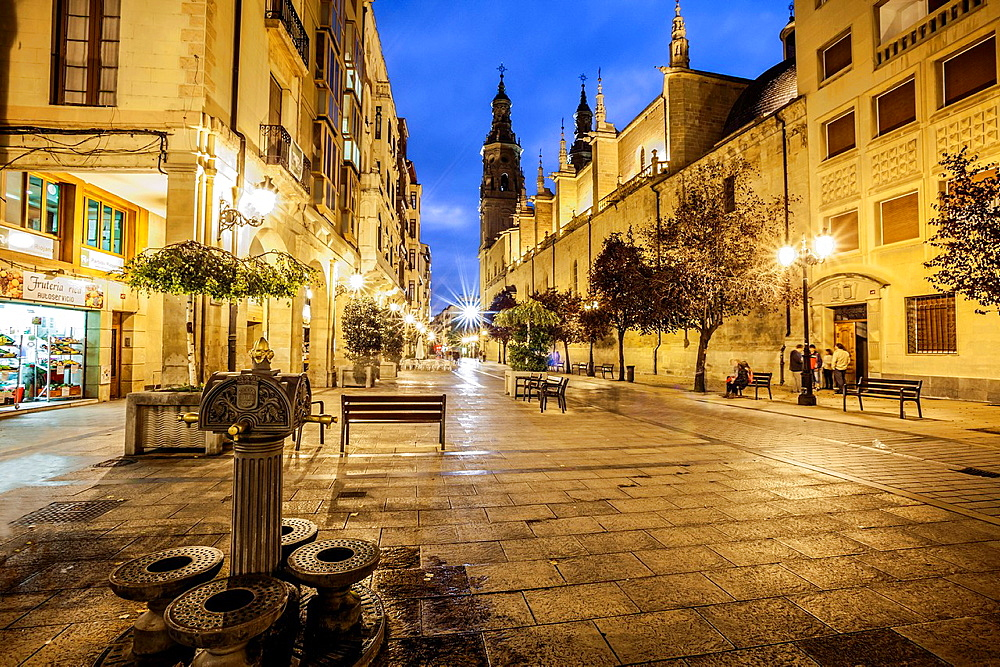 St. James way, Cathedral of Santa Mari≠a de la Redonda at Logrono, La Rioja, Spain.