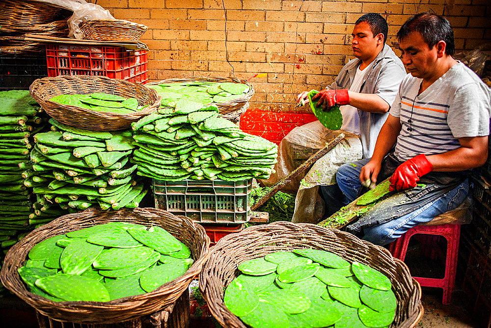 La Merced market, nopales shop, Mexico City, Mexico.