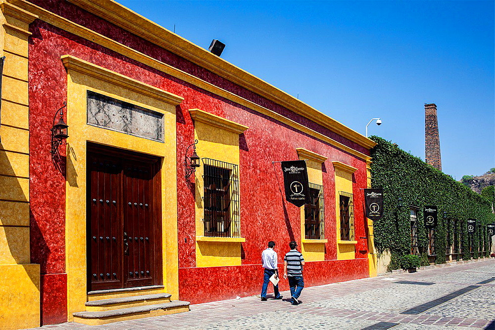 Jose cuervo tequila distillery in tequila village, Mexico.