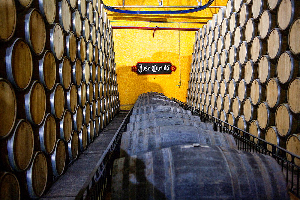 Maturation barrels, Jose cuervo tequila distillery in tequila village, Mexico.