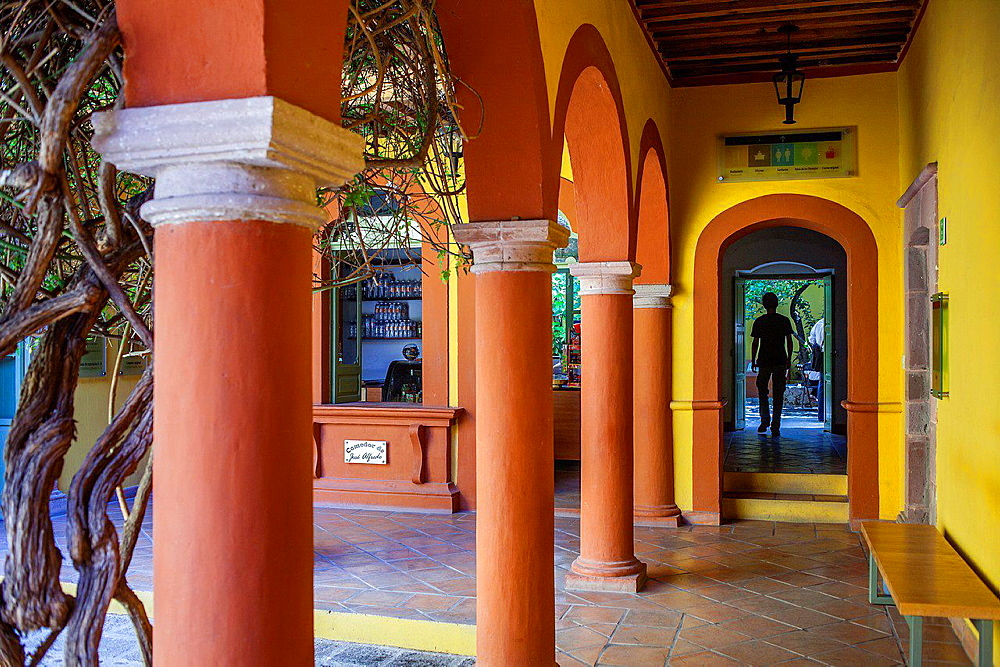Courtyard of Casa Museo Jose Alfredo Jimenez,Guanajuato 13, Dolores Hidalgo, Guanajuato State, Mexico.