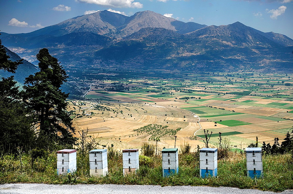Beehives on the slopes above the Pheneos valley with Mount Kyllini (Ziria) in the background, Corinthia, Peloponnese, Greece.