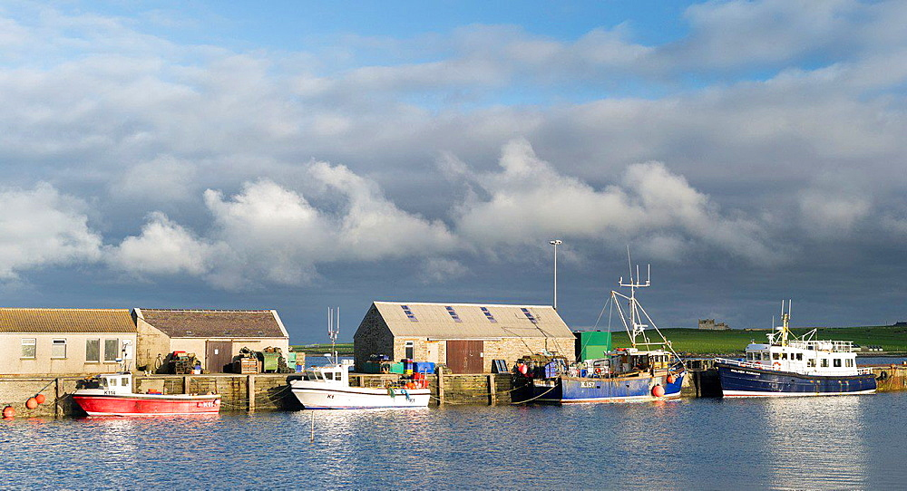 Pierowall harbour, the main village on Westray, a small island in the Orkney archipelago. europe, central europe, northern europe, united kingdom, great britain, scotland, northern isles,orkney islands, June.