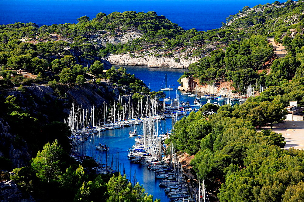 The calanches of Port Miou near Cassis, Bouches du Rhone, Provence-Alpes-Cote d'Azur, France.