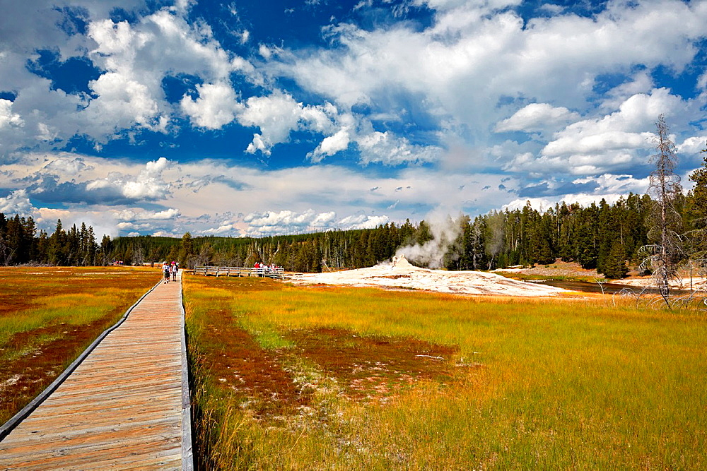 Boardwalks at Upper Geyser Basin, Yellowstone National Park, Wyoming, USA