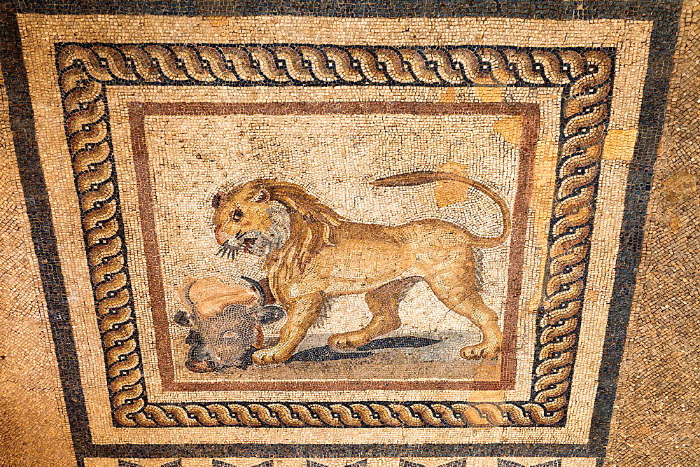 Mosaic of a lion and a bullaÄôs head on the floor of one of the terrace houses, Ephesus, Turkey.