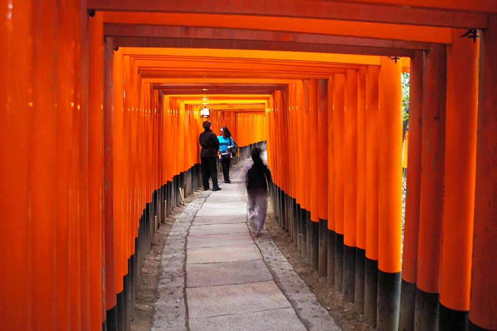 Fushima Inari Shrine With Thousands of Torii Gates. Japan