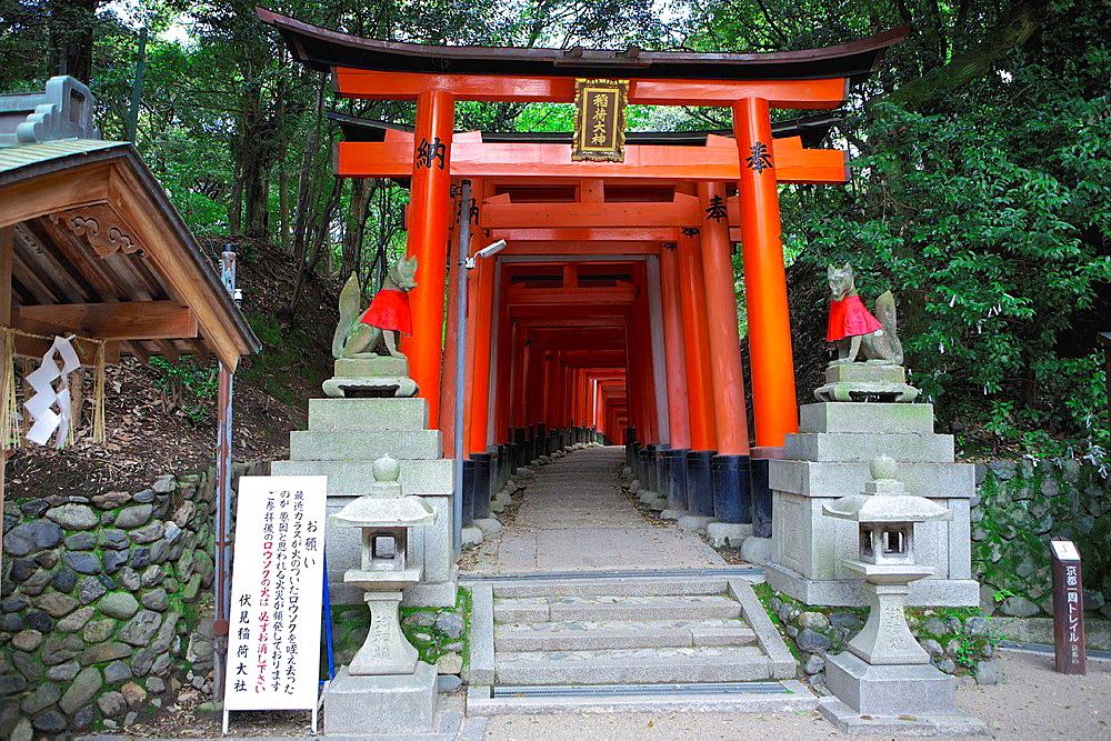 Fushima Inari Shrine. Japan