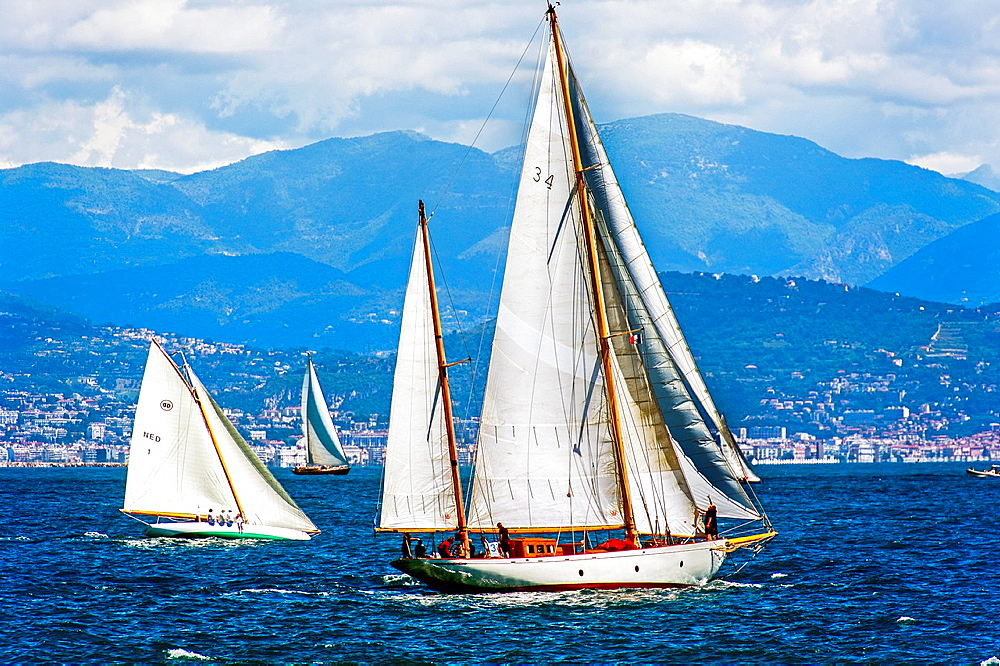 Europe, France, Alpes-Maritimes, Antibes. Les Voiles d'Antibes. Old sailing regatta collection, yachting trophy Paneira, a selection of the finest vintage yachts.