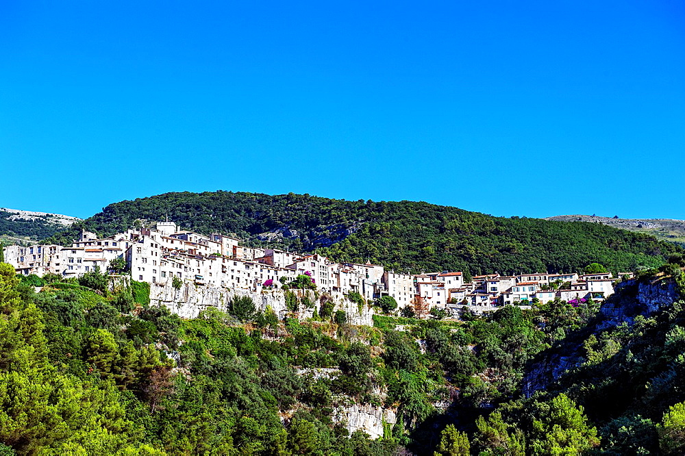 Europe, France, Alpes-Maritimes. Tourettes-sur-Loup.