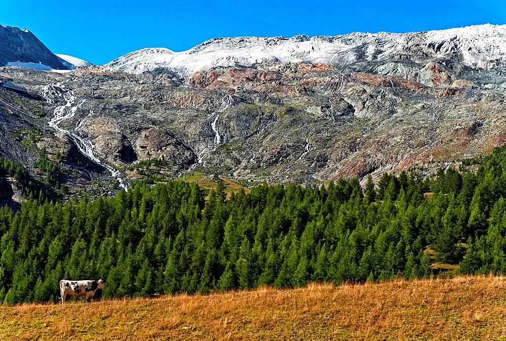 Glacier de Fee, Saas Fee, canton Valais, Switzerland.