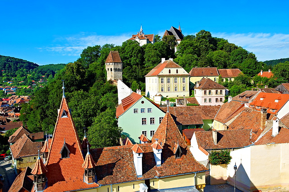 View of Sighisoara Saxon fortified medieval citadel from the clock tower, Transylvania, Romania. - 817-460088