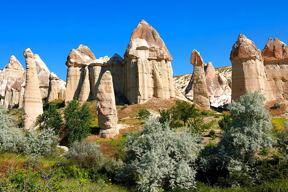 The Fairy Chimneys of Love Valley, Cappadocia Turkey.