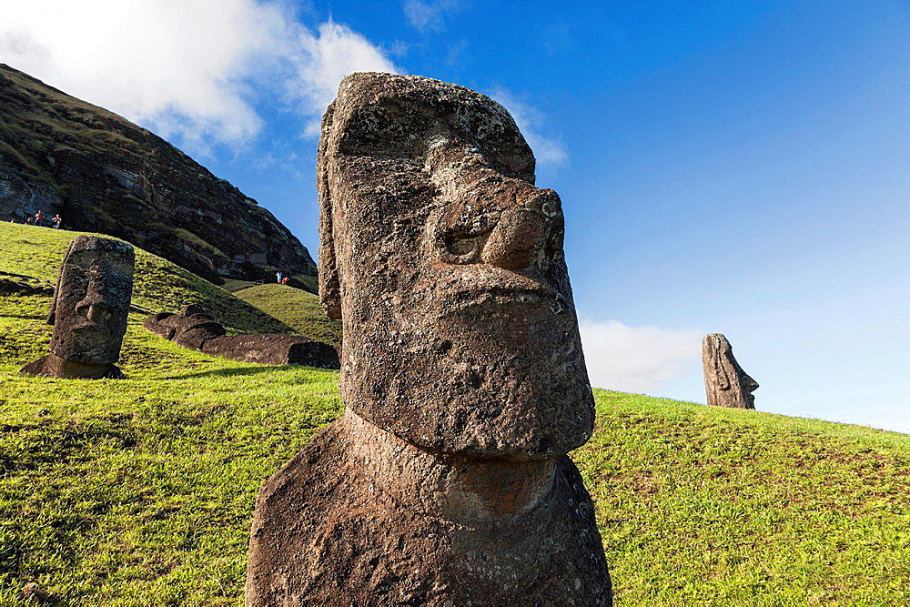 Moais in rano raraku in easter island.