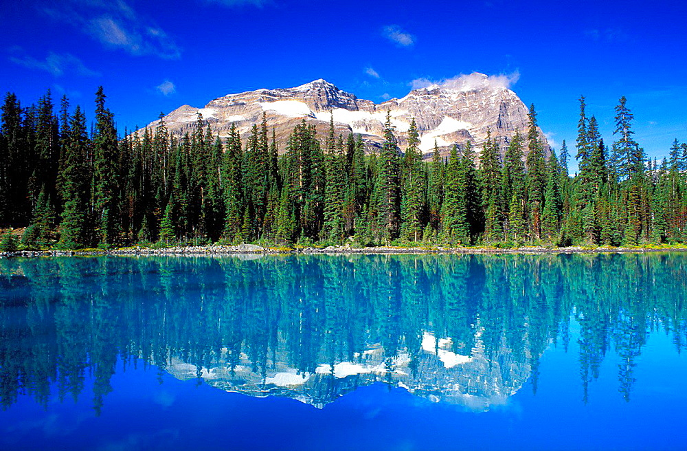 Morning light on Mount Odaray reflected in Lake O'Hara, Canadian Rockies, Yoho National Park, British Columbia, Canada.
