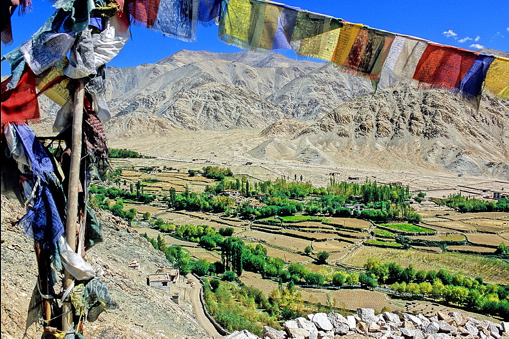 Buddhist prayer flags in the Indus valley, Ladakh, Jammu and Kashmir state, India