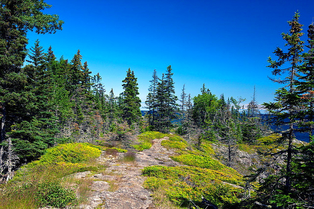 Rocky hiking trail, Stoll Memorial Trail, Isle Royale National Park, Michigan, United States of America.
