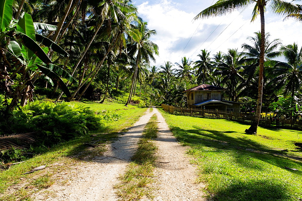 Rural Country Road on Bohol Island, Phillipines.
