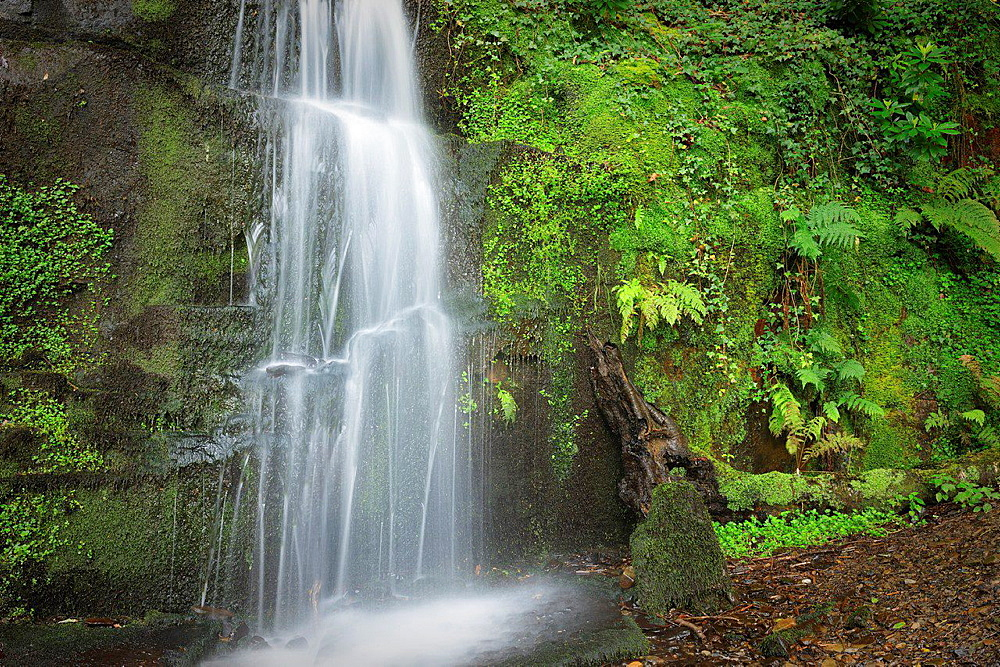 Melin Court (also Melin Cwrt) waterfall Resolven Vale of Neath Neath & Port Talbot South Wales UK.
