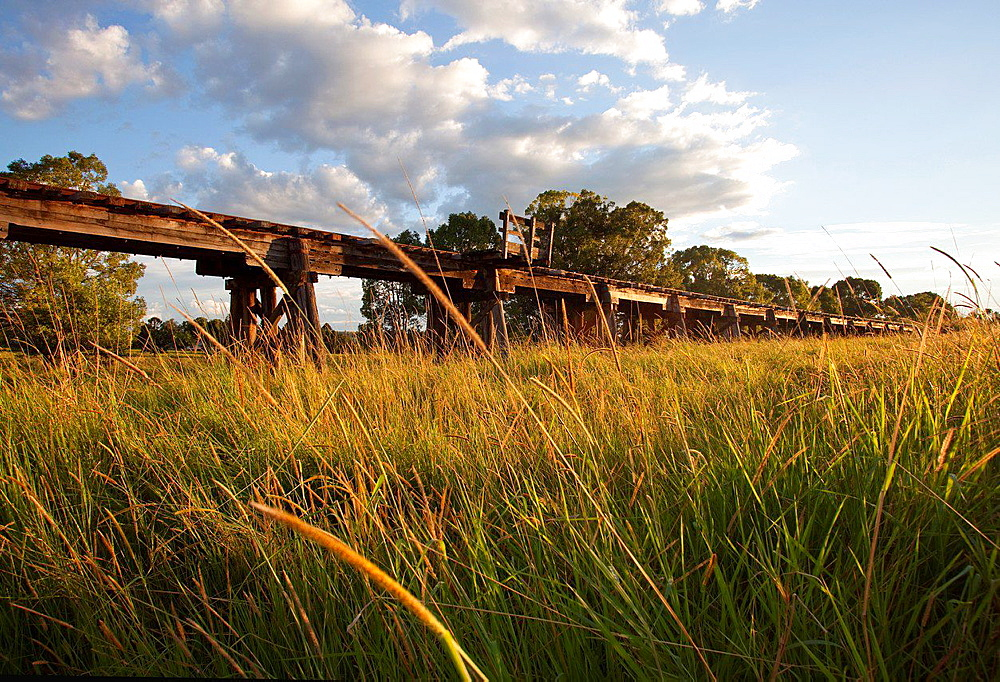 Wooden viaduct at Eltham, NSW, Australia.