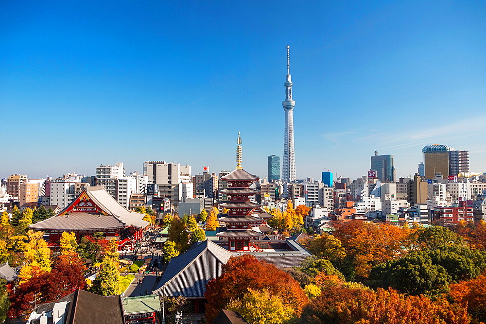 Japan, Tokyo City ,Asakusa District, Sensoji Temple and the Sky Tree Tower. - 817-464176