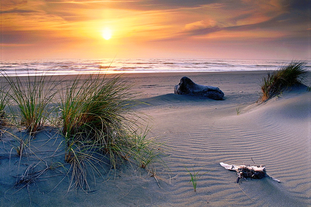 Sunset at Gold Bluffs Beach, Prairie Creek Redwoods State Park, Humboldt County, CALIFORNIA.