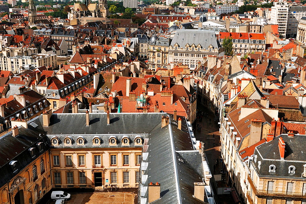 Partial view of the Palace of the Dukes of Burgundy, Dijon, Cote d¥Or, Burgundy, France