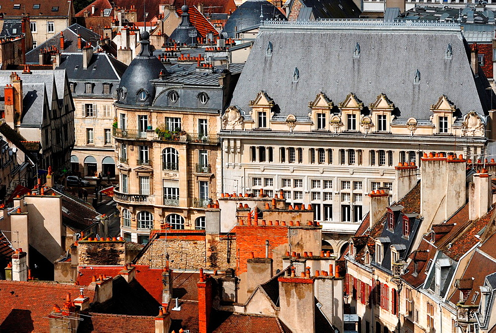 Dijon, Cote d¥Or, Burgundy, France
