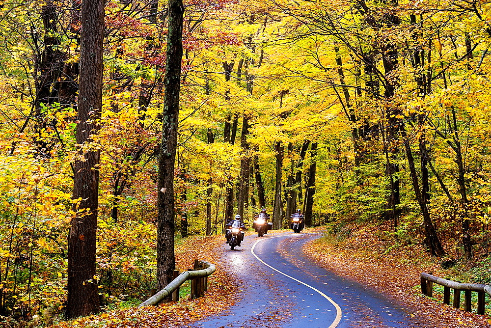 Motorcyclists on rural autumn road, Mt. Greylock State Reservation, Massachusetts, USA.